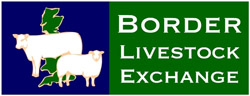 Border Livestock Exchange