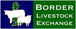 Border Livestock Exchange